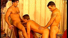 Sexy men with big muscles and great cocks fuck each other raw