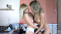 Well-endowed harlot Nora stimulates clit of passionate Paulina A
